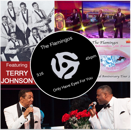 The Flamingos Featuring Terry Johnson