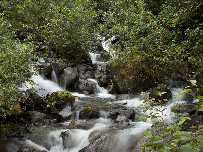 Relive Juneau's gold-rush history and pan for gold in the authentic setting of Gold Creek.